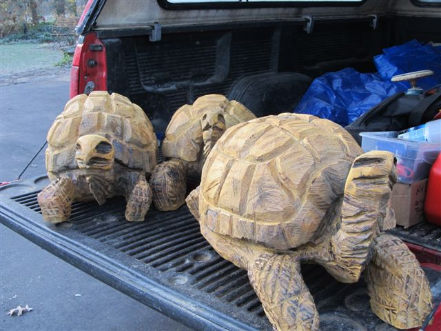 Turtles rob peterson carving